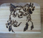 Wolf and paw print on box