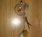 Sea shell dream-catcher